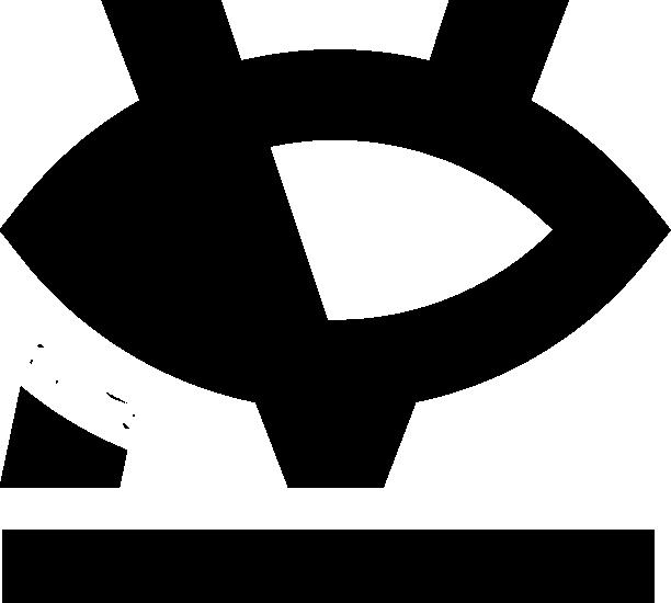 Logo NoiyVision