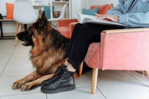 service dog sitting next to  owner legs